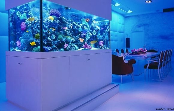 aquarium air laut