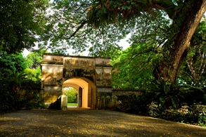 Fort canning park image from national parks singapore website