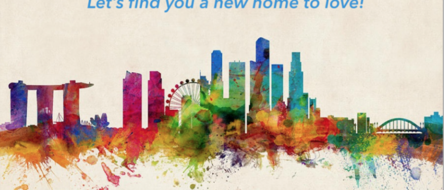 Singapore Rental Guide for Expats