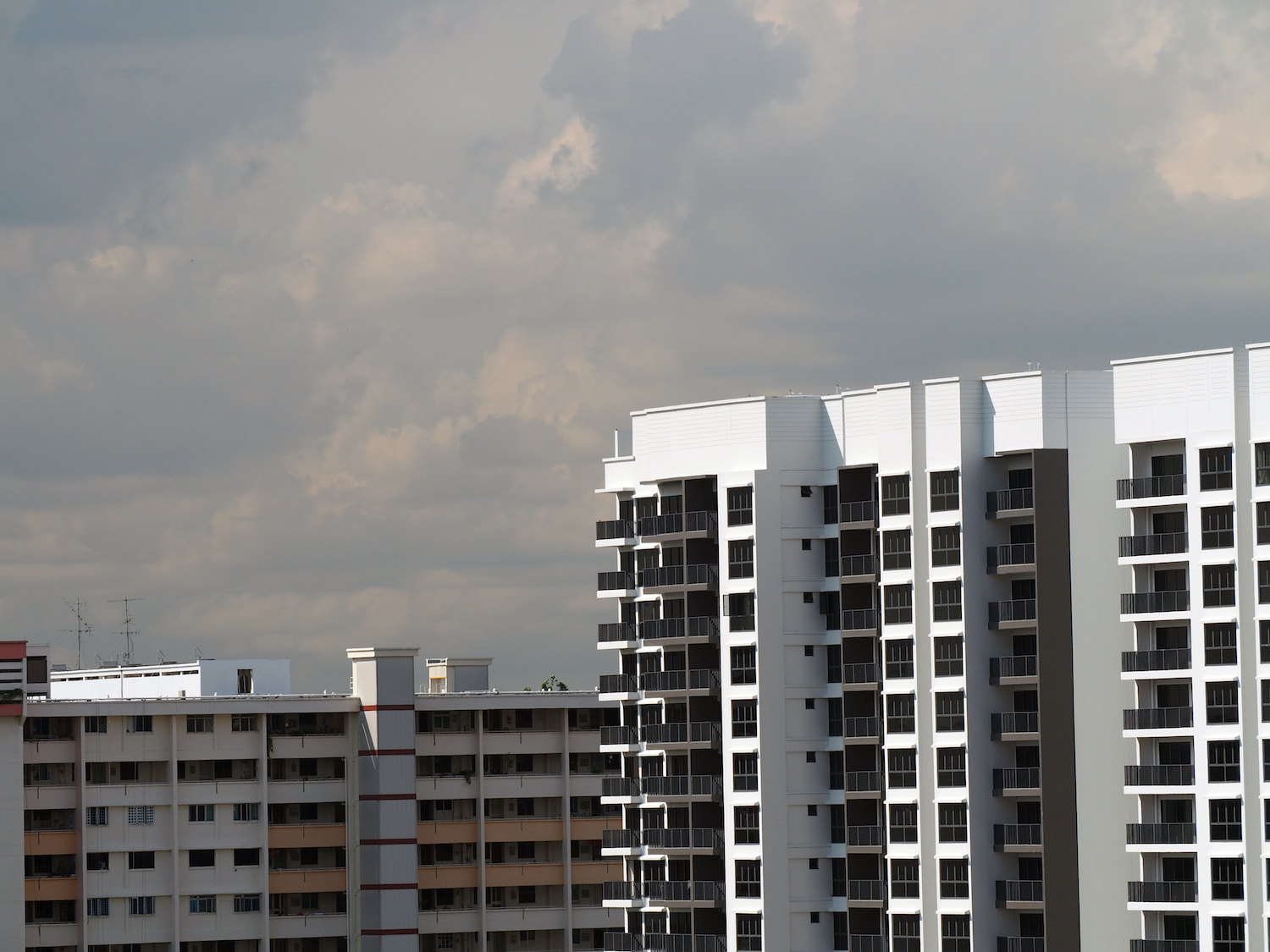 how HDB priority schemes can affect BTO applications