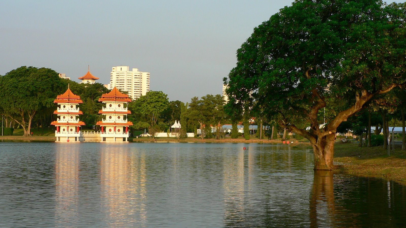 Jurong Lake is known for its tranquility, but not for long once the re-development project starts