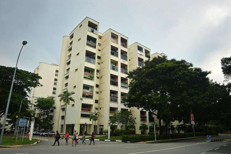 HUDC flats, such as Raintree Gardens, are the latest properties to face en-bloc sales