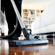 vacuum and clean the house