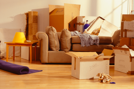 Moving, Professional movers