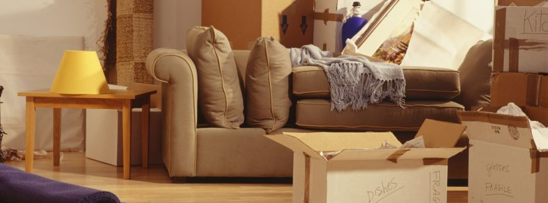 decluttering guide for homeowners