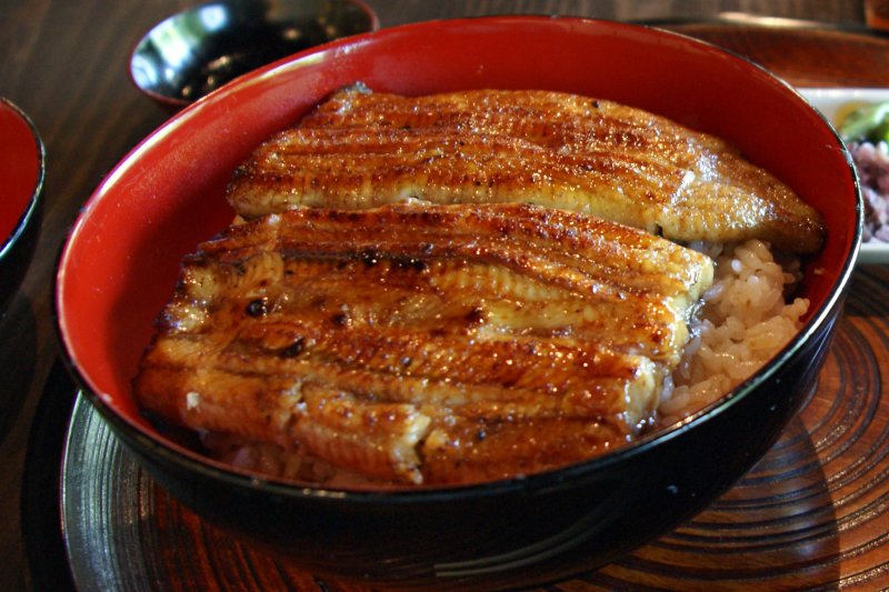 Head to Chijuyotei for great japanese food