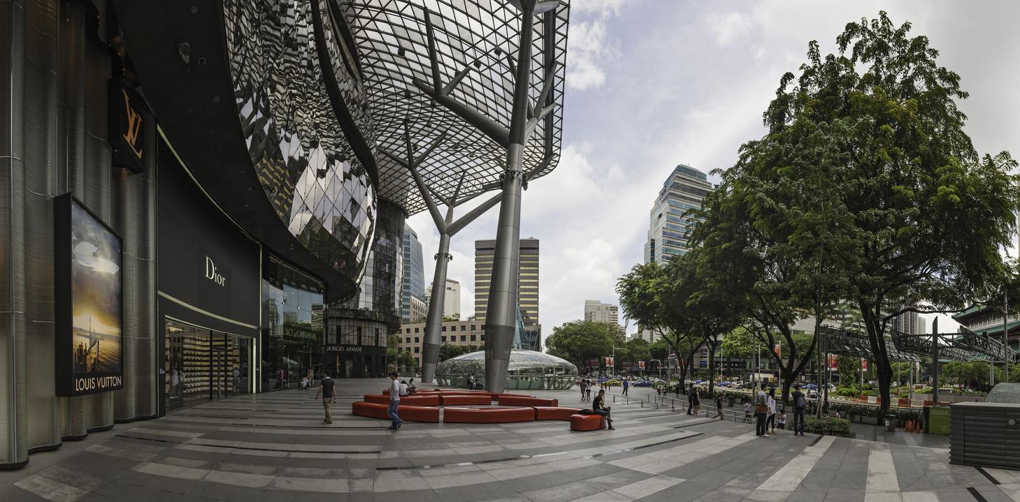 Ion Orchard's retail landscape