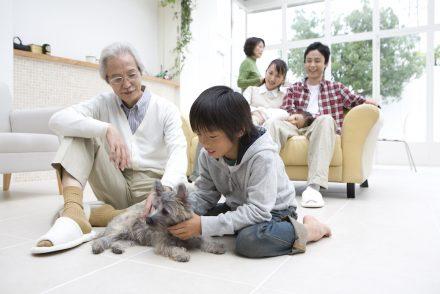 renovation considerations elderly