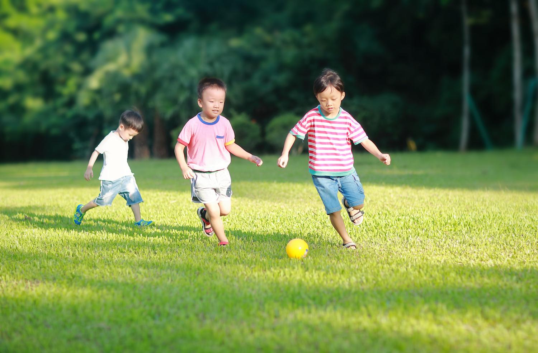 labrador nature reserve children playing