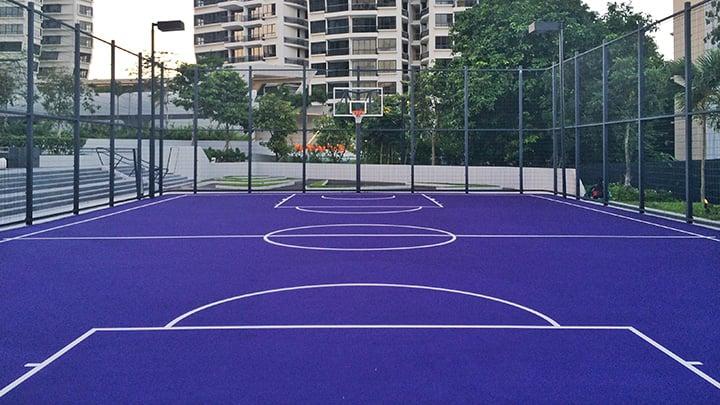 Condo sports facilities Singapore D'Leedon basketball court