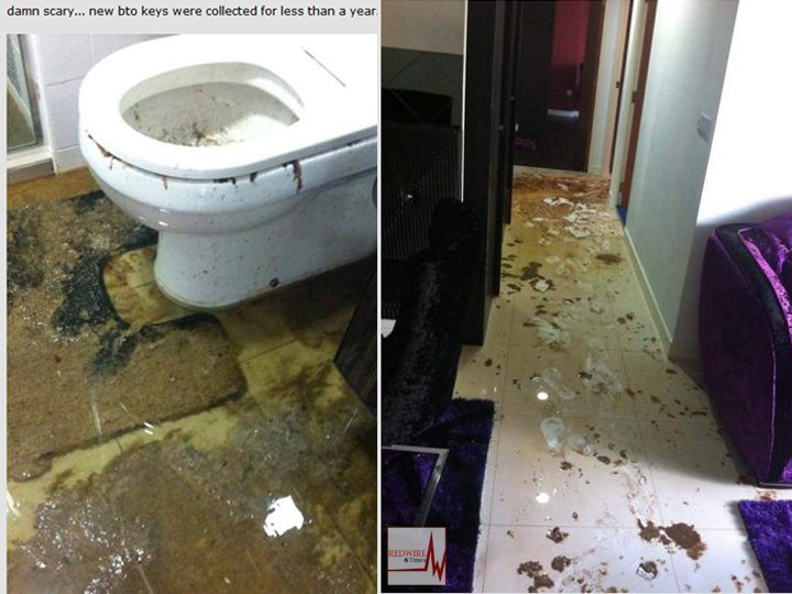 BTO complaints sewage