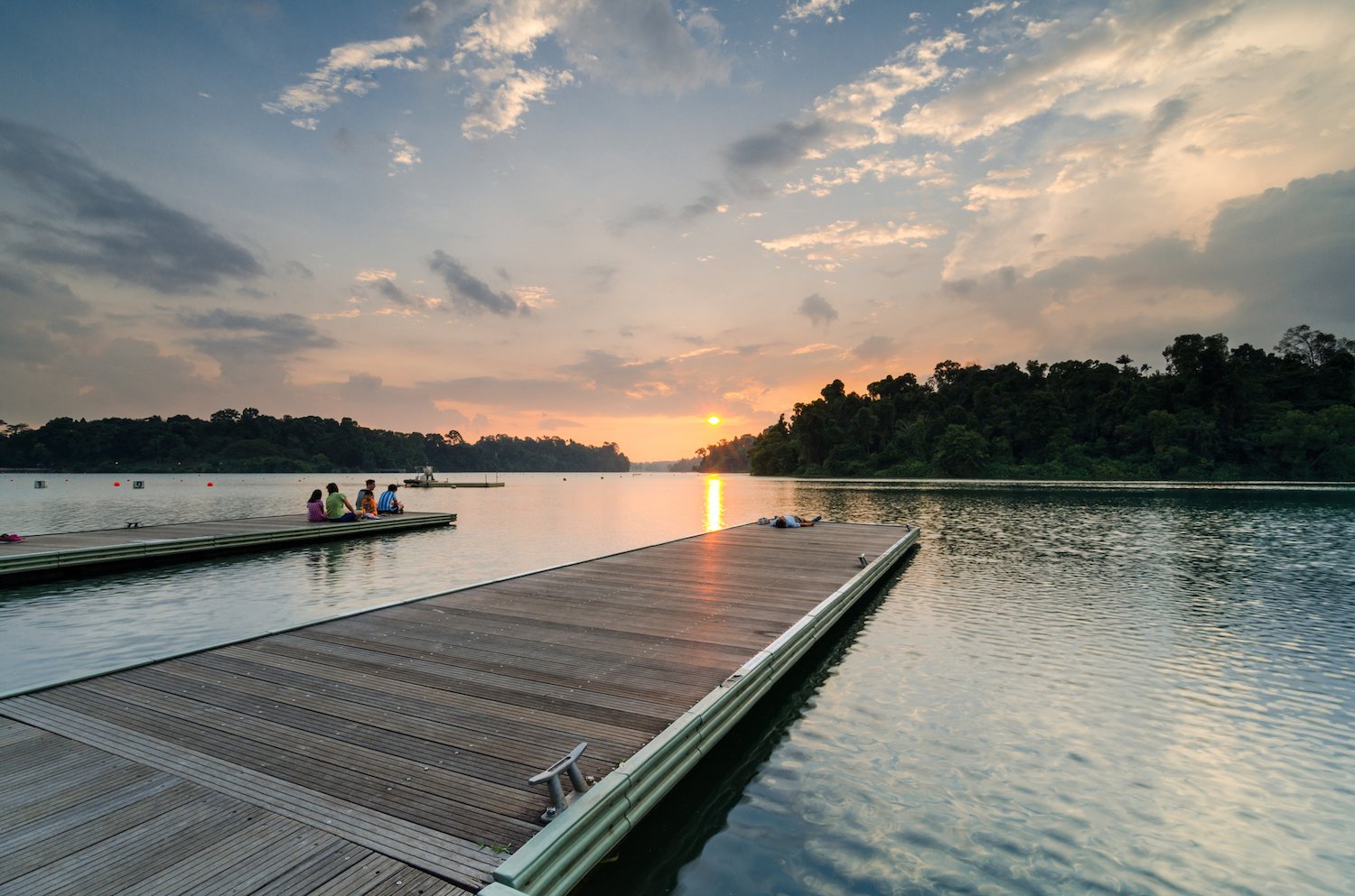 JadeScape offers sweeping views of MacRitchie Reservoir