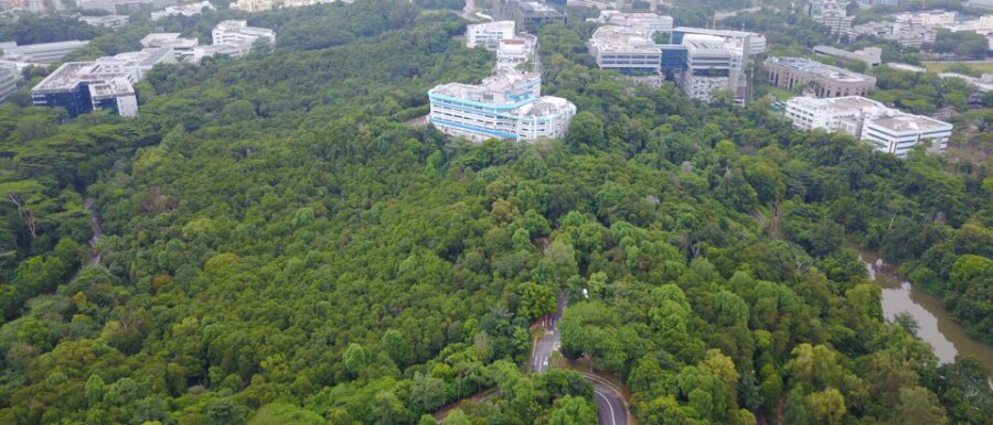 Your home by the park Kent Ridge Hill Residences