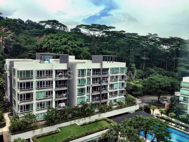 Condos in Singapore nature lovers The Raintree Bukit Timah