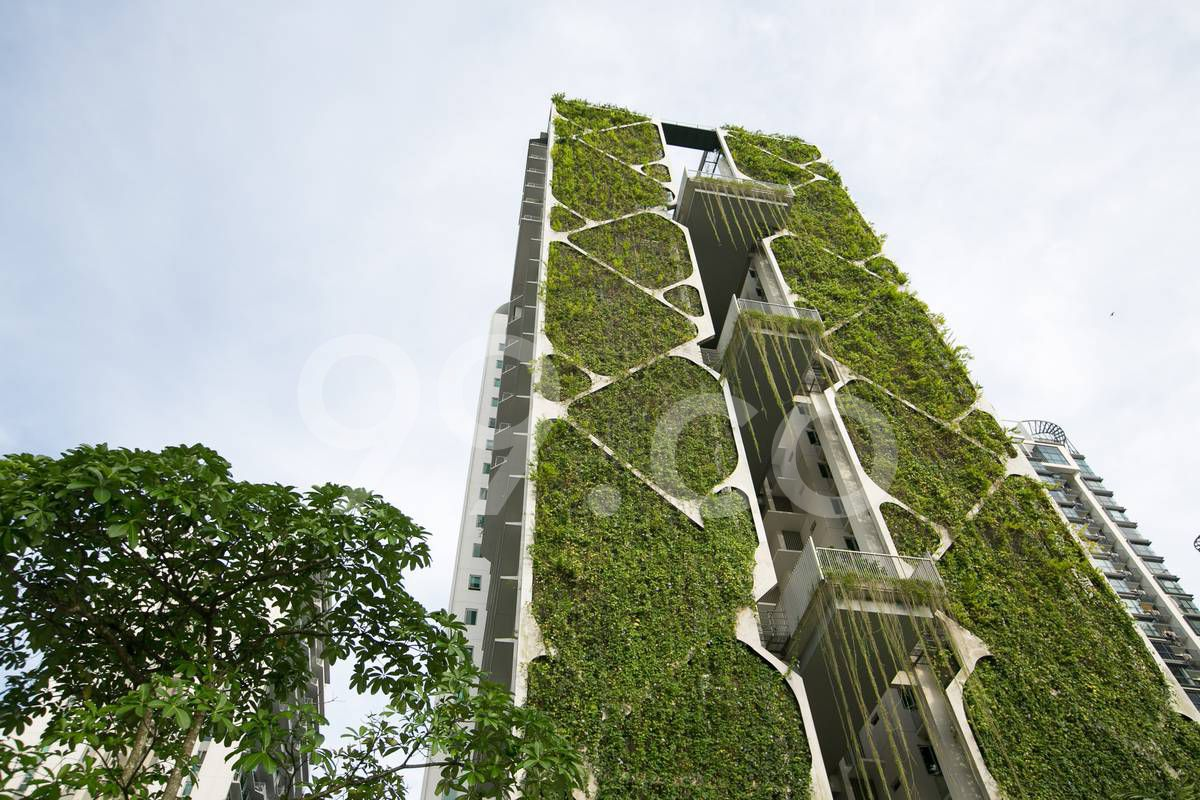 condos in Singapore nature lovers Tree House condo