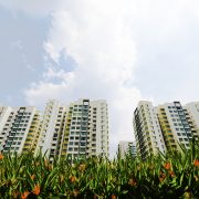 HDB flats in an open field