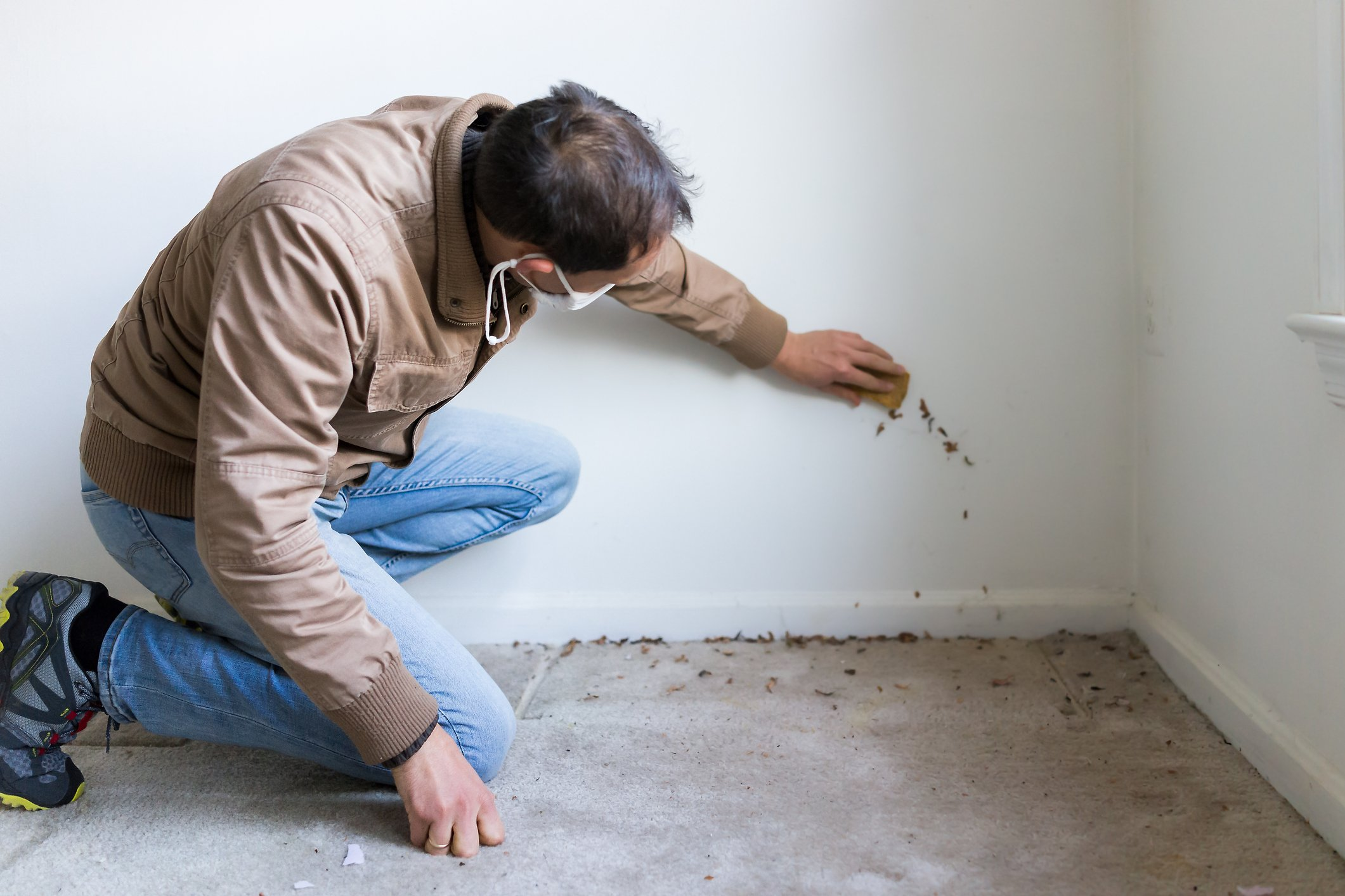 Man inspecting  a scratched wall