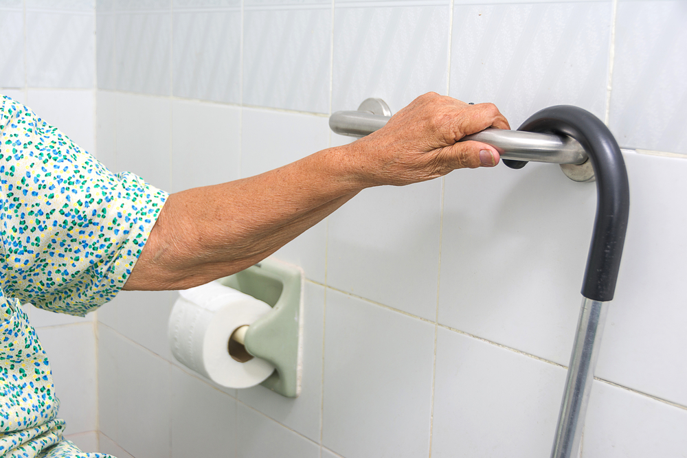 Grab bars installed in toilets to facilitate movement for the elderly.