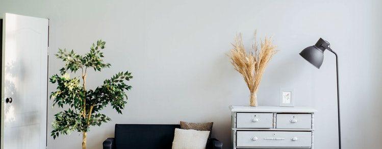 redecorate rental unit