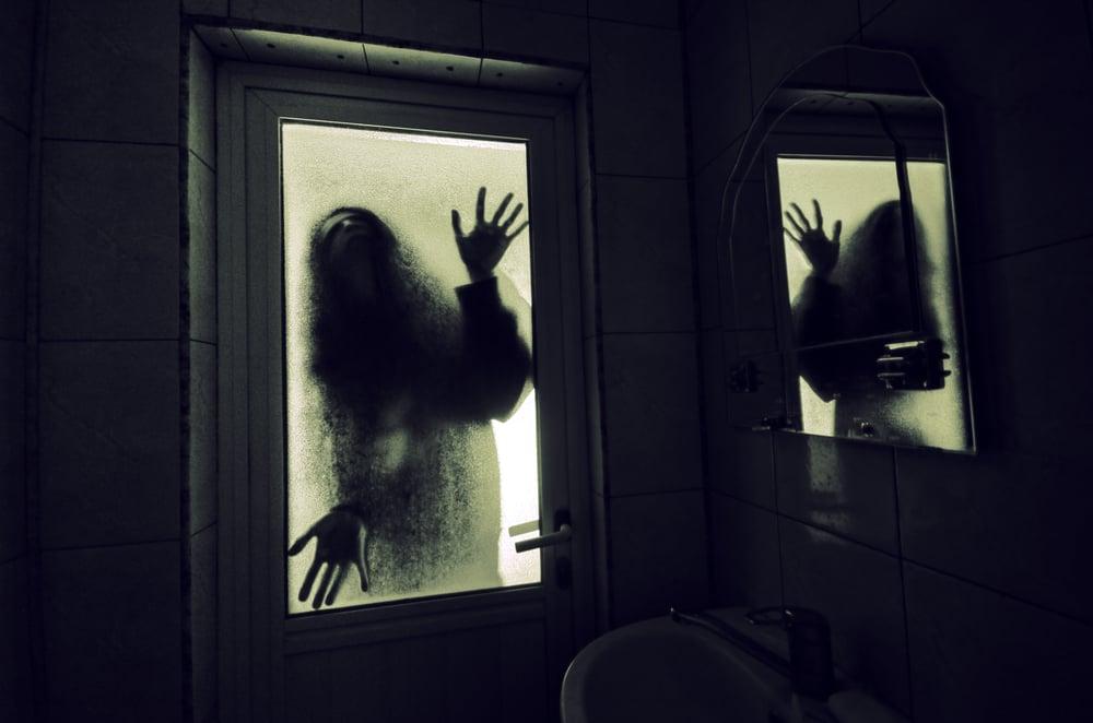 A creepy shadow in front of a toilet door
