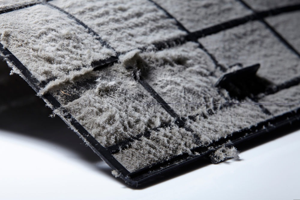 Air Filter filled with dust