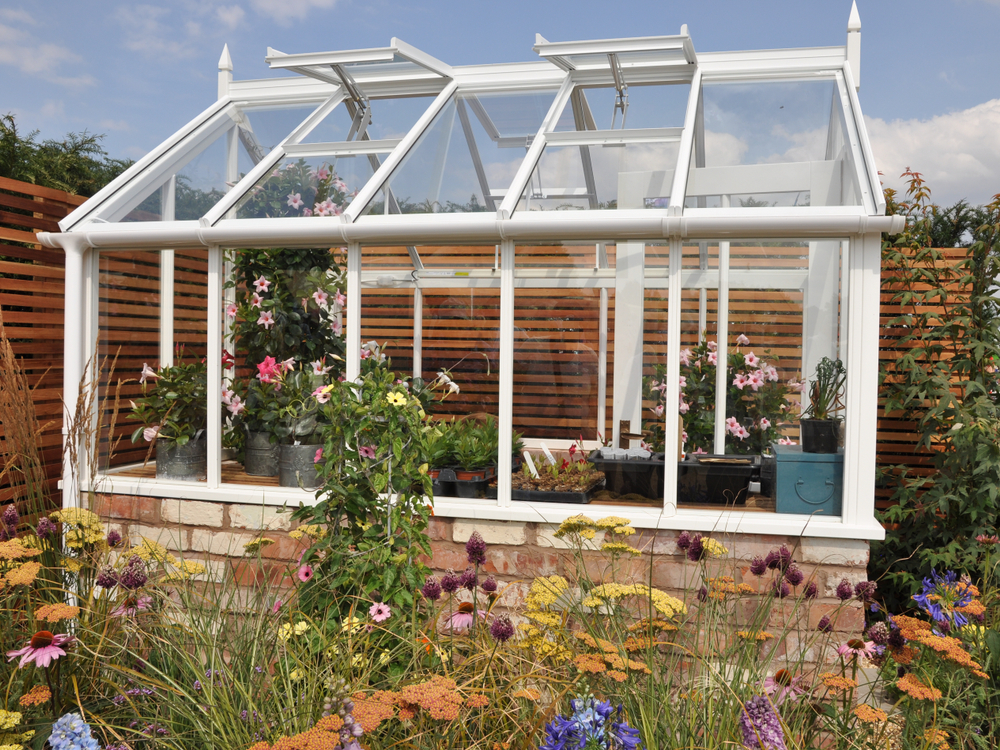 Greenhouse in a Backyard Garden of Home