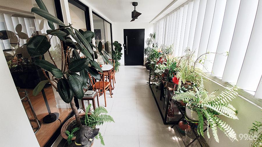 ang mo kio hdb jumbo flat terrace