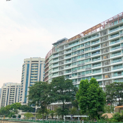 august condo sales experts take analysis