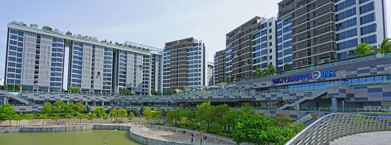 condo rents 2020 punggol watertown condo