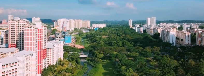 Blocks of HDB flats and a long stretch of nature park