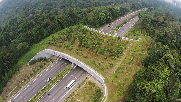 aerial photograph image of Eco-Link@BKE Bukit Timah